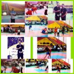 مسابقات ووشو قهرمانی کشور   کسب سه مدال برای ساوه